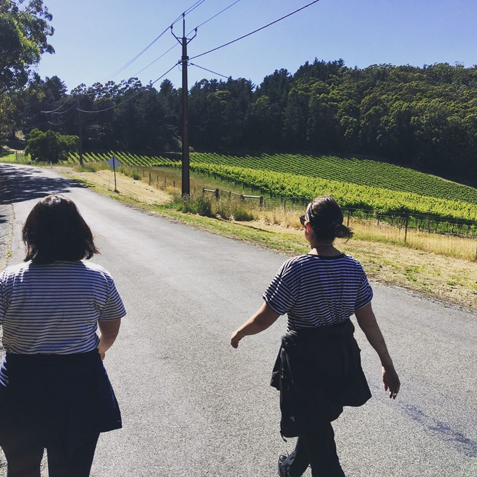 Group walk and talks: Two women walking in the sunshine along a road in Uraidla South Australia. Their backs are to us and they are happily striding along.